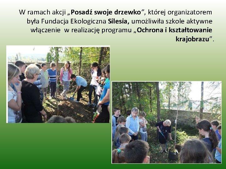 """W ramach akcji """"Posadź swoje drzewko"""", której organizatorem była Fundacja Ekologiczna Silesia, umożliwiła szkole"""