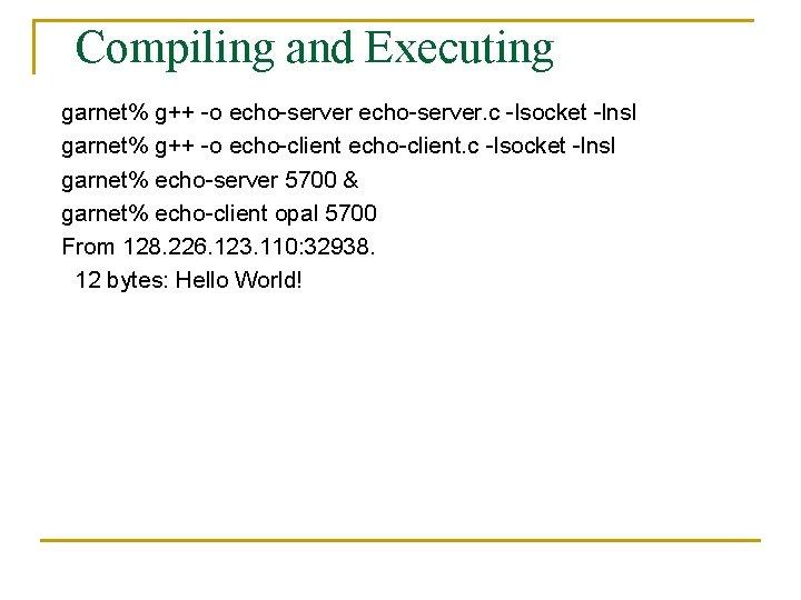 Compiling and Executing garnet% g++ -o echo-server. c -lsocket -lnsl garnet% g++ -o echo-client.