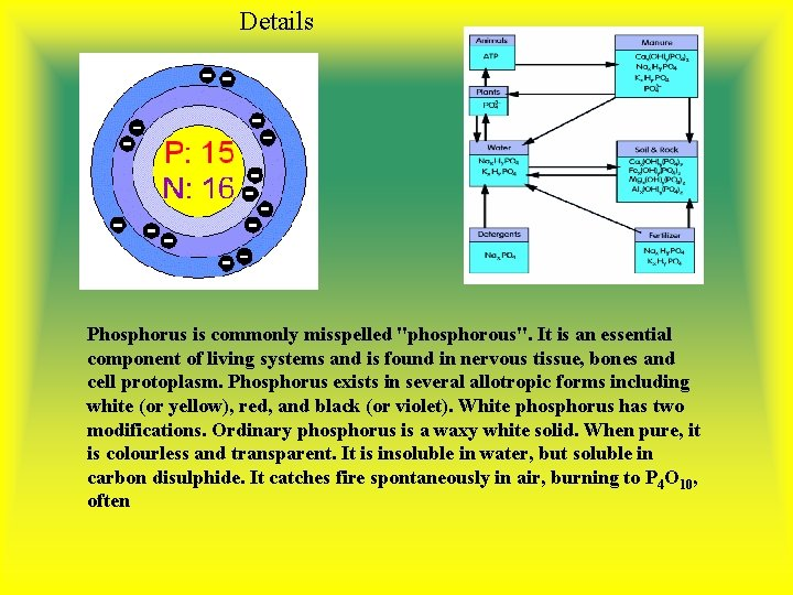 """Details Phosphorus is commonly misspelled """"phosphorous"""". It is an essential component of living systems"""