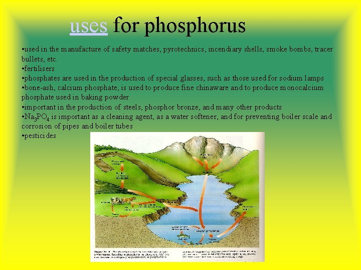 uses for phosphorus • used in the manufacture of safety matches, pyrotechnics, incendiary shells,