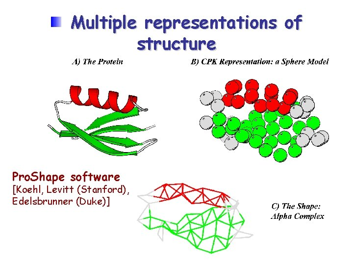 Multiple representations of structure Pro. Shape software [Koehl, Levitt (Stanford), Edelsbrunner (Duke)]