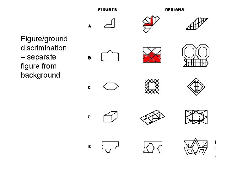 Figure/ground discrimination – separate figure from background