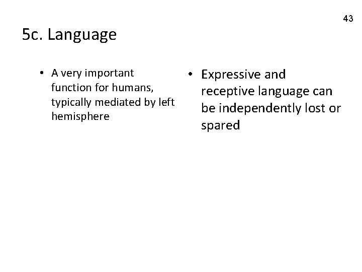 43 5 c. Language • A very important function for humans, typically mediated by