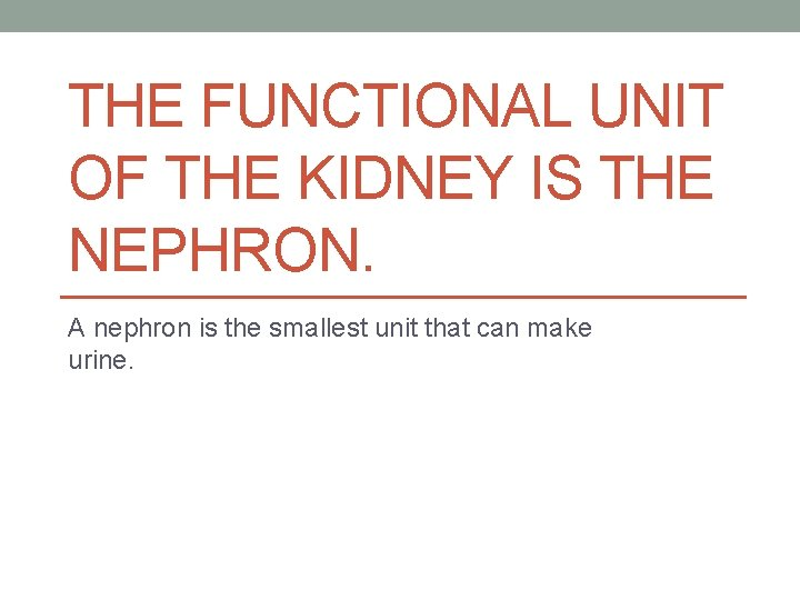 THE FUNCTIONAL UNIT OF THE KIDNEY IS THE NEPHRON. A nephron is the smallest