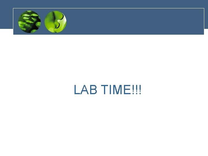 LAB TIME!!!