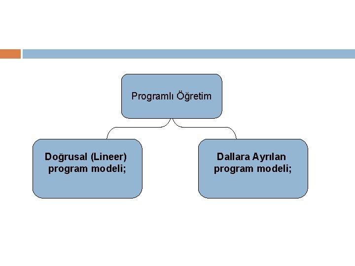 Programlı Öğretim Doğrusal (Lineer) program modeli; Dallara Ayrılan program modeli;