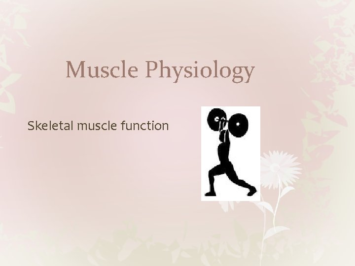 Muscle Physiology Skeletal muscle function