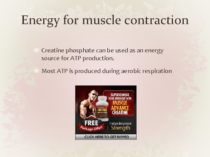Energy for muscle contraction Creatine phosphate can be used as an energy source for