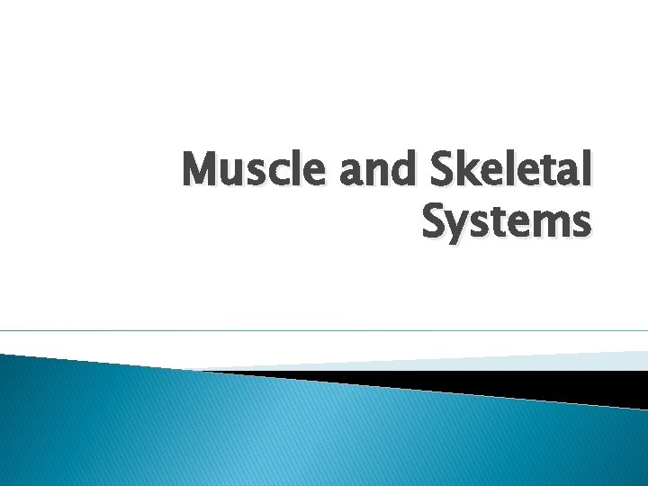 Muscle and Skeletal Systems