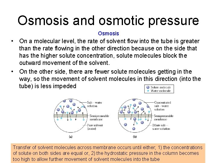 Osmosis and osmotic pressure Osmosis • On a molecular level, the rate of solvent