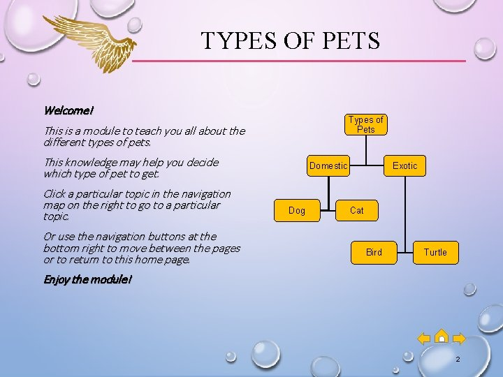 TYPES OF PETS Welcome! Types of Pets This is a module to teach you