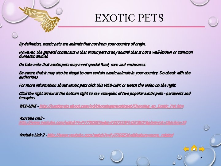 EXOTIC PETS By definition, exotic pets are animals that not from your country of