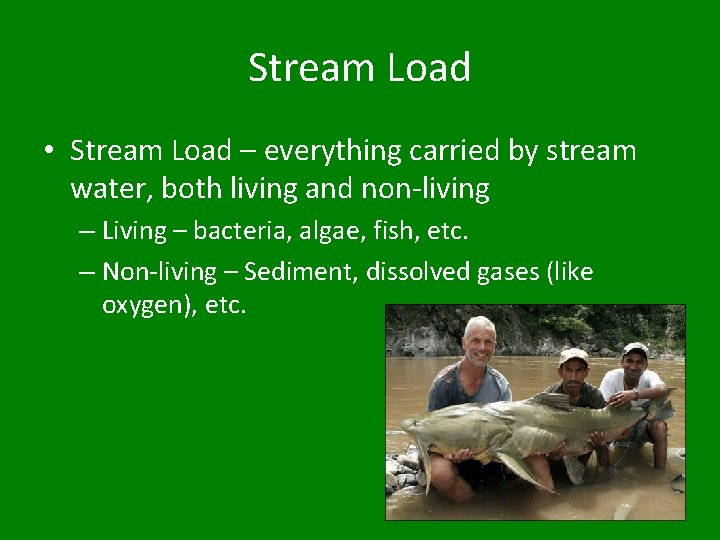 Stream Load • Stream Load – everything carried by stream water, both living and