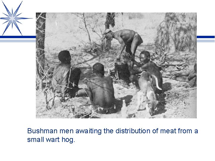 Bushman men awaiting the distribution of meat from a small wart hog.