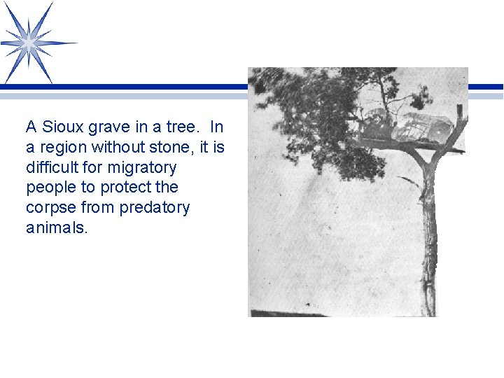 A Sioux grave in a tree. In a region without stone, it is difficult