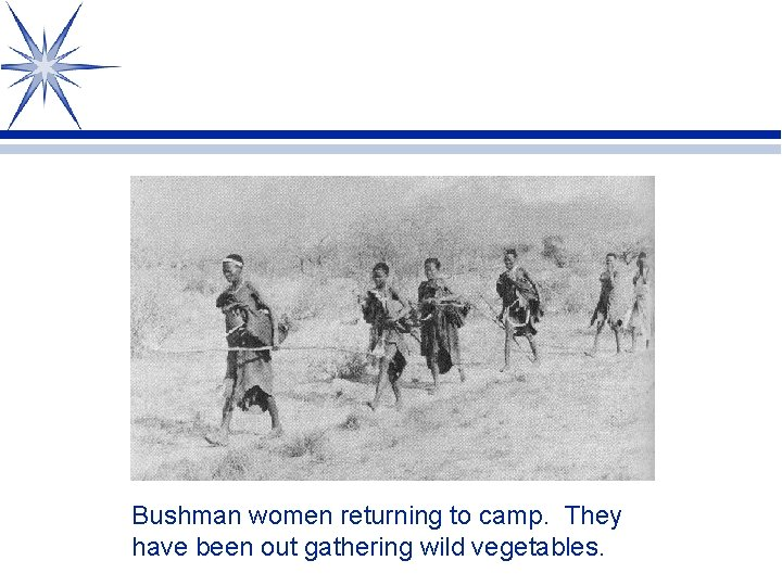 Bushman women returning to camp. They have been out gathering wild vegetables.