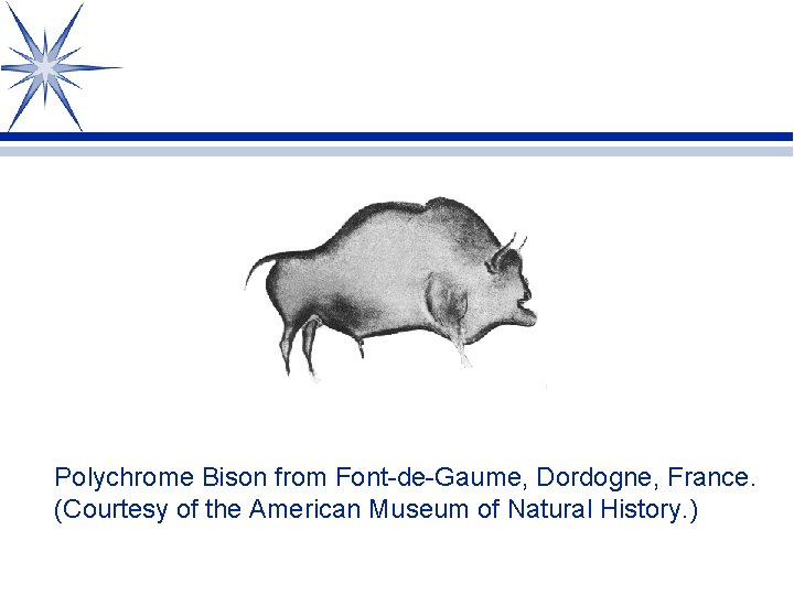 Polychrome Bison from Font-de-Gaume, Dordogne, France. (Courtesy of the American Museum of Natural History.