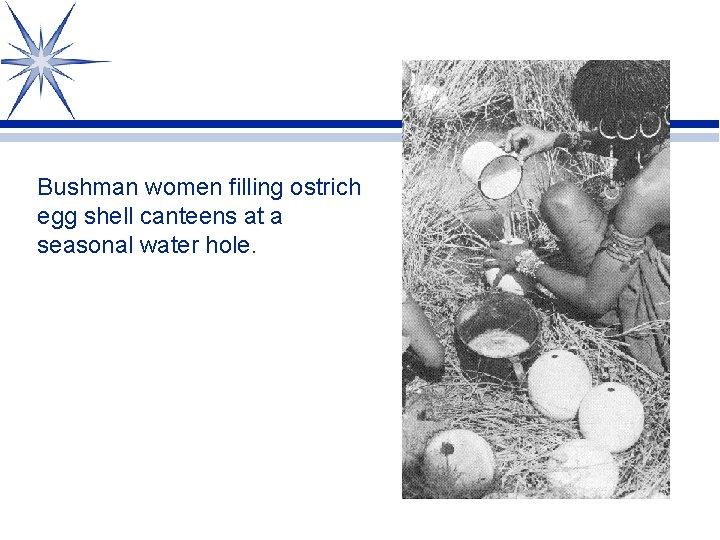 Bushman women filling ostrich egg shell canteens at a seasonal water hole.