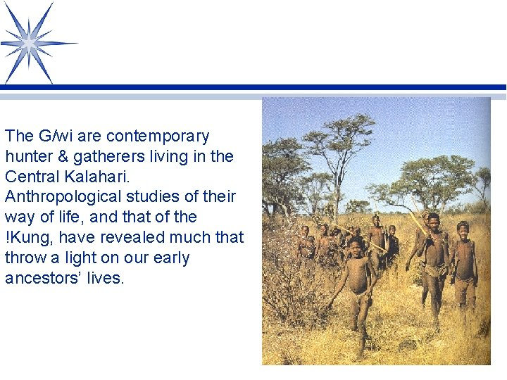 The G/wi are contemporary hunter & gatherers living in the Central Kalahari. Anthropological studies