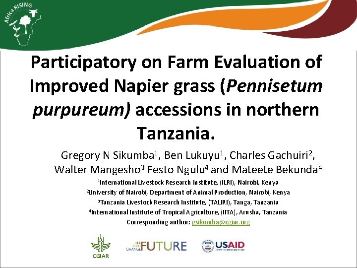 Participatory on Farm Evaluation of Improved Napier grass (Pennisetum purpureum) accessions in northern Tanzania.