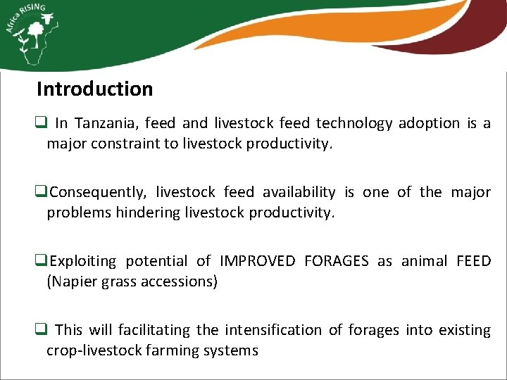 Introduction q In Tanzania, feed and livestock feed technology adoption is a major constraint
