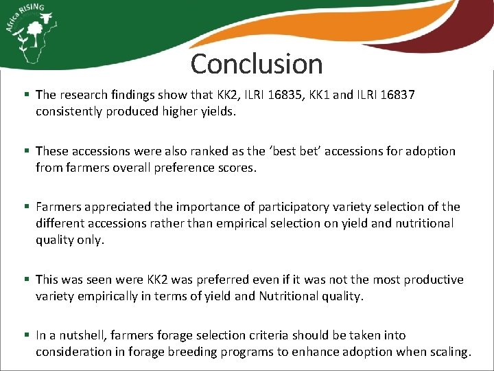 Conclusion § The research findings show that KK 2, ILRI 16835, KK 1 and