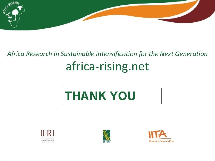 Africa Research in Sustainable Intensification for the Next Generation africa-rising. net THANK YOU