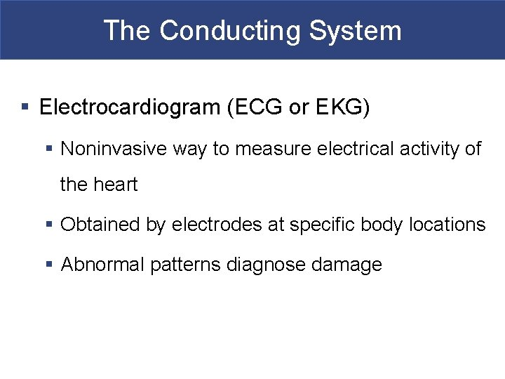 The Conducting System § Electrocardiogram (ECG or EKG) § Noninvasive way to measure electrical