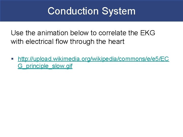 Conduction System Use the animation below to correlate the EKG with electrical flow through