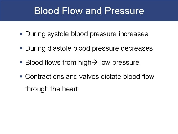 Blood Flow and Pressure § During systole blood pressure increases § During diastole blood