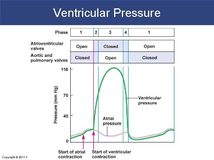 Ventricular Pressure Copyright © 2011 Pearson Education, Inc.