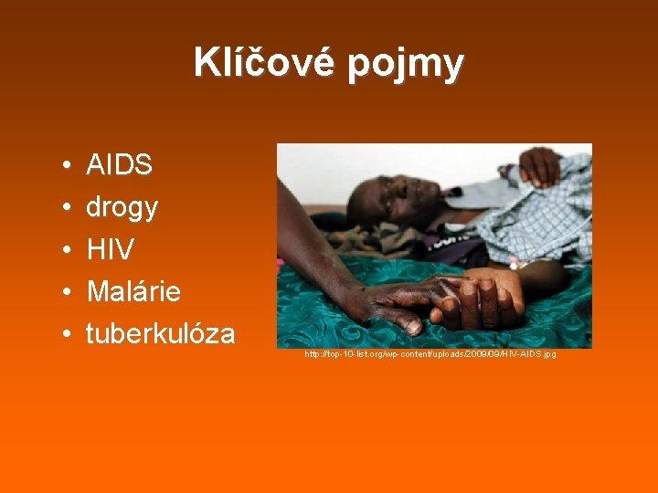 Klíčové pojmy • • • AIDS drogy HIV Malárie tuberkulóza http: //top-10 -list. org/wp-content/uploads/2009/09/HIV-AIDS.