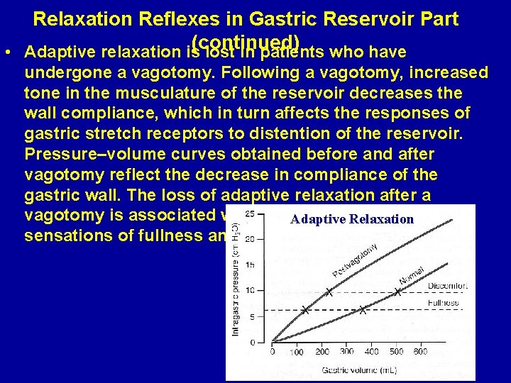 Relaxation Reflexes in Gastric Reservoir Part (continued) • Adaptive relaxation is lost in patients