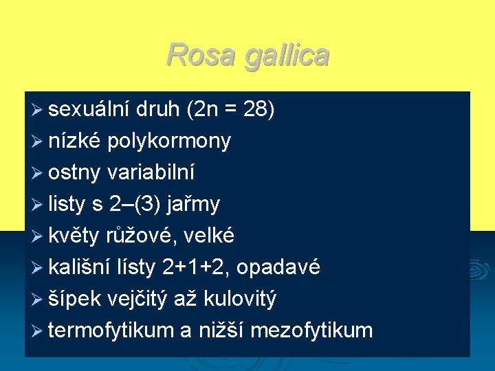 Rosa gallica Ø sexuální druh (2 n = 28) Ø nízké polykormony Ø ostny