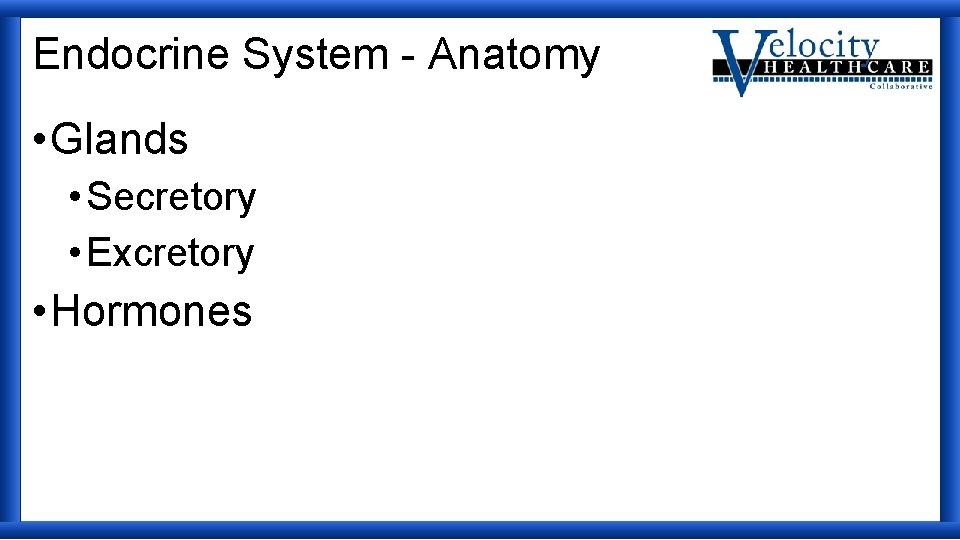 Endocrine System - Anatomy • Glands • Secretory • Excretory • Hormones