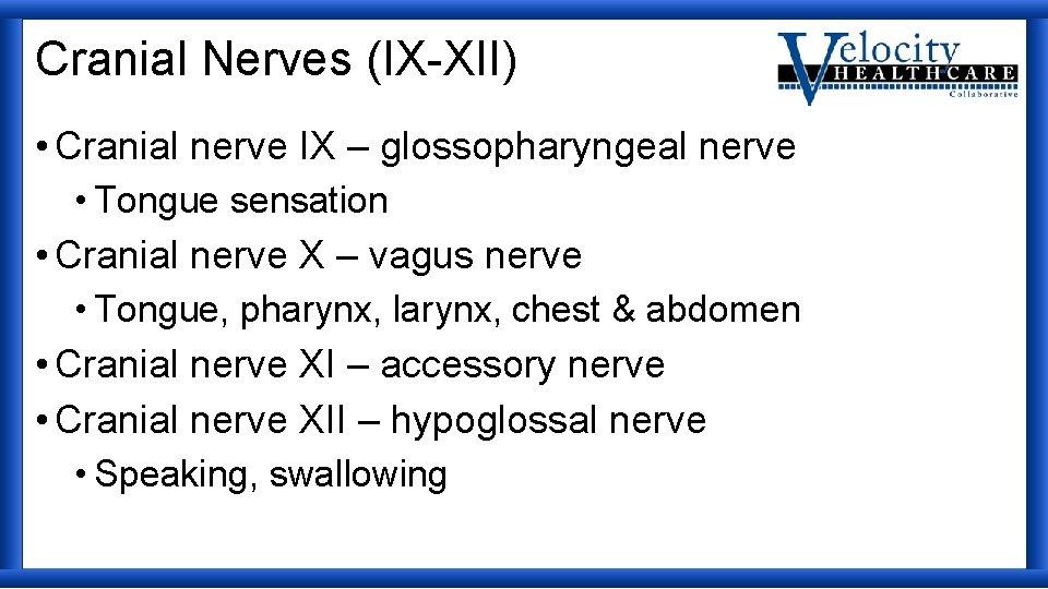 Cranial Nerves (IX-XII) • Cranial nerve IX – glossopharyngeal nerve • Tongue sensation •