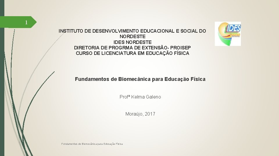 1 INSTITUTO DE DESENVOLVIMENTO EDUCACIONAL E SOCIAL DO NORDESTE IDES NORDESTE DIRETORIA DE PROGRMA