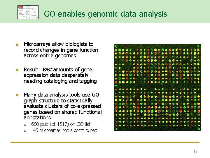 GO enables genomic data analysis n n n Microarrays allow biologists to record changes
