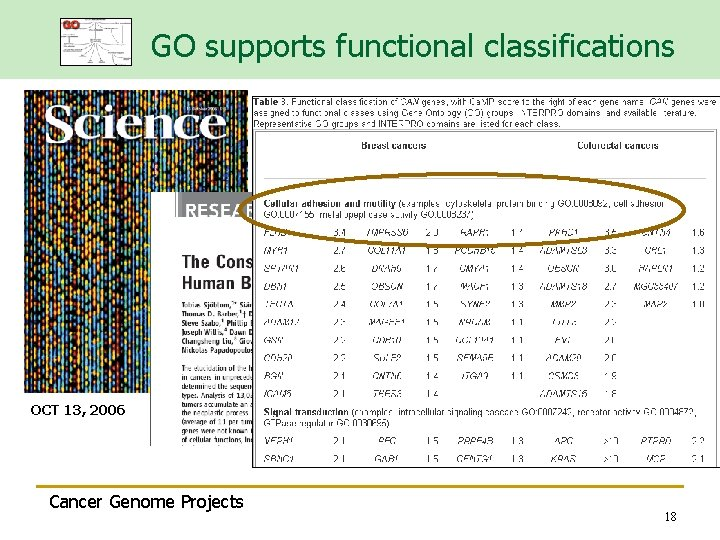 GO supports functional classifications OCT 13, 2006 Cancer Genome Projects 18