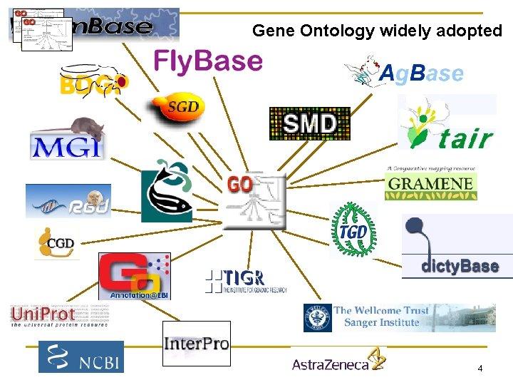 Gene Ontology widely adopted Ag. Base 4