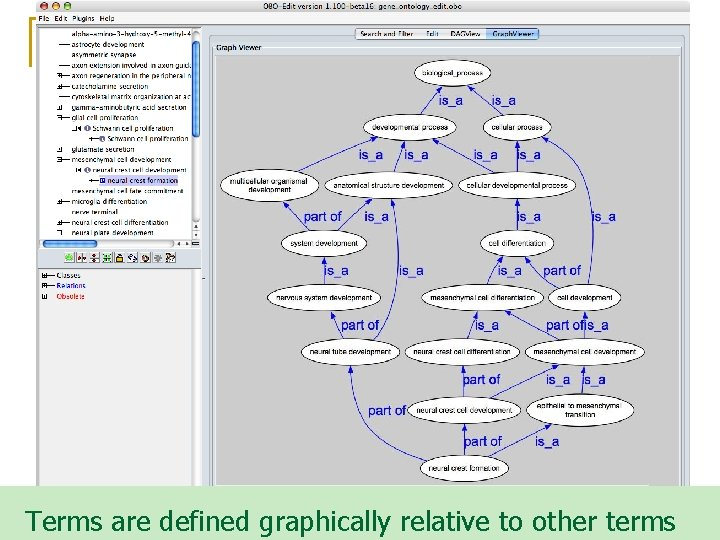 Terms are defined graphically relative to other terms
