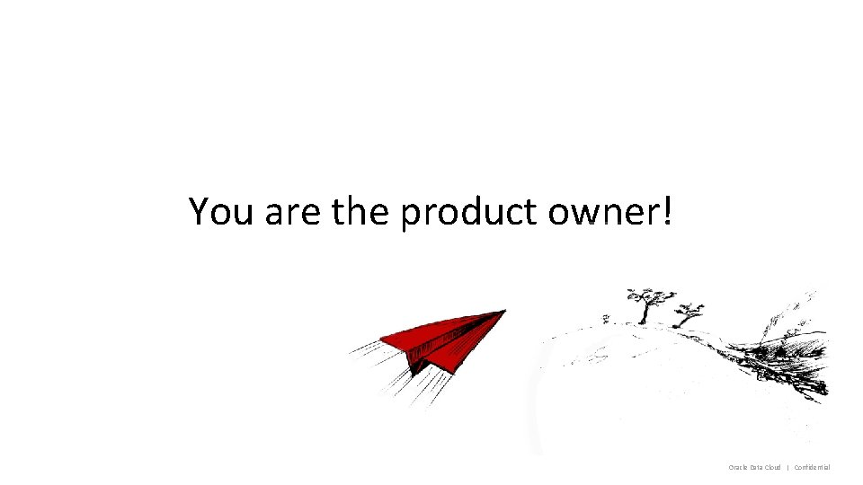 You are the product owner! Oracle Data Cloud   Confidential