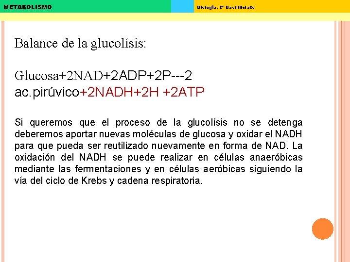 METABOLISMO Biología. 2º Bachillerato Balance de la glucolísis: Glucosa+2 NAD+2 ADP+2 P---2 ac. pirúvico+2