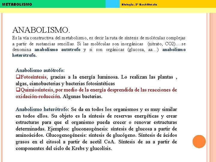 METABOLISMO Biología. 2º Bachillerato ANABOLISMO. Es la vía constructiva del metabolismo, es decir la