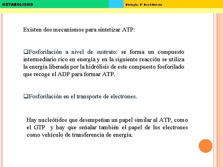 METABOLISMO Biología. 2º Bachillerato Existen dos mecanismos para sintetizar ATP: q. Fosforilación a nivel