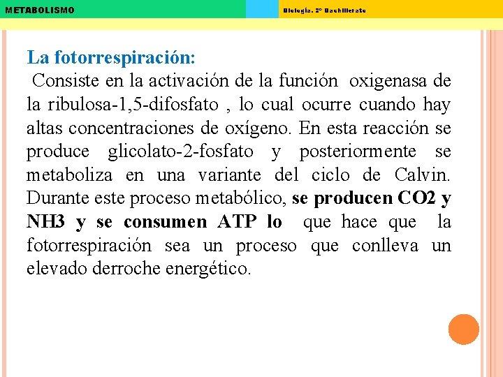 METABOLISMO Biología. 2º Bachillerato La fotorrespiración: Consiste en la activación de la función oxigenasa