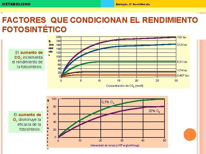 METABOLISMO Biología. 2º Bachillerato FACTORES QUE CONDICIONAN EL RENDIMIENTO FOTOSINTÉTICO El aumento de CO