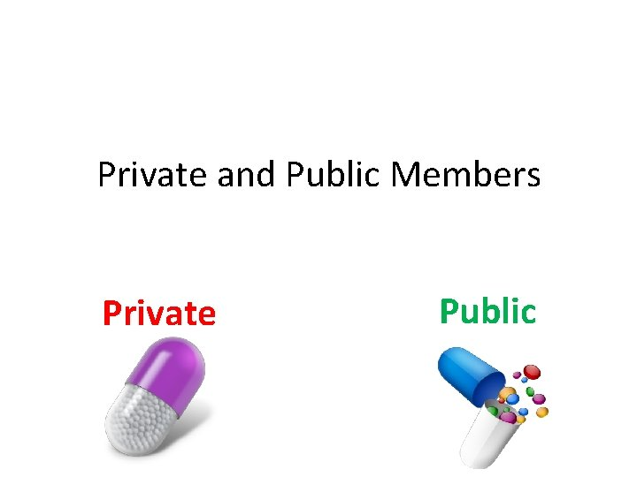 Private and Public Members Private Public