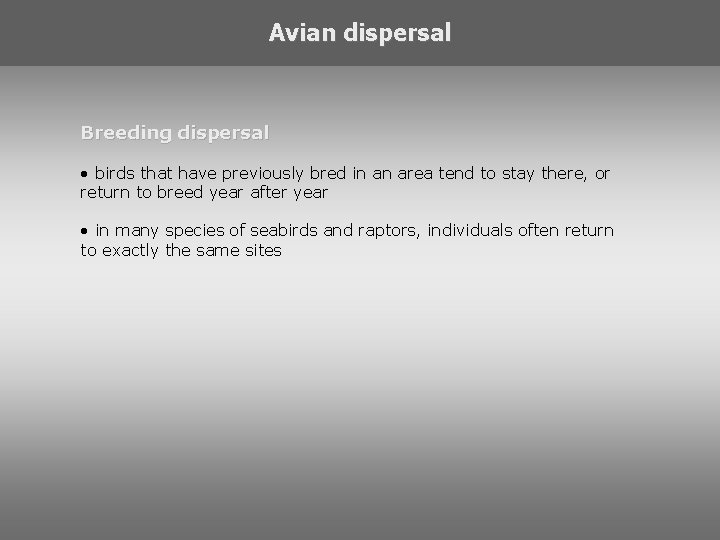 Avian dispersal Breeding dispersal • birds that have previously bred in an area tend