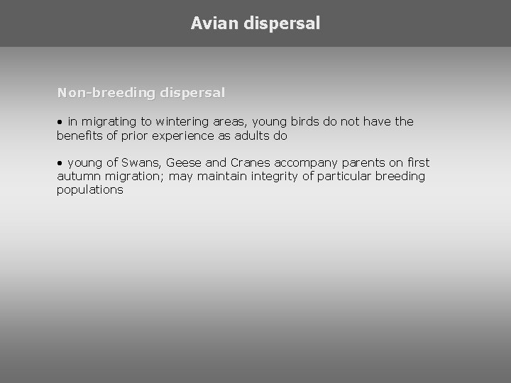 Avian dispersal Non-breeding dispersal • in migrating to wintering areas, young birds do not